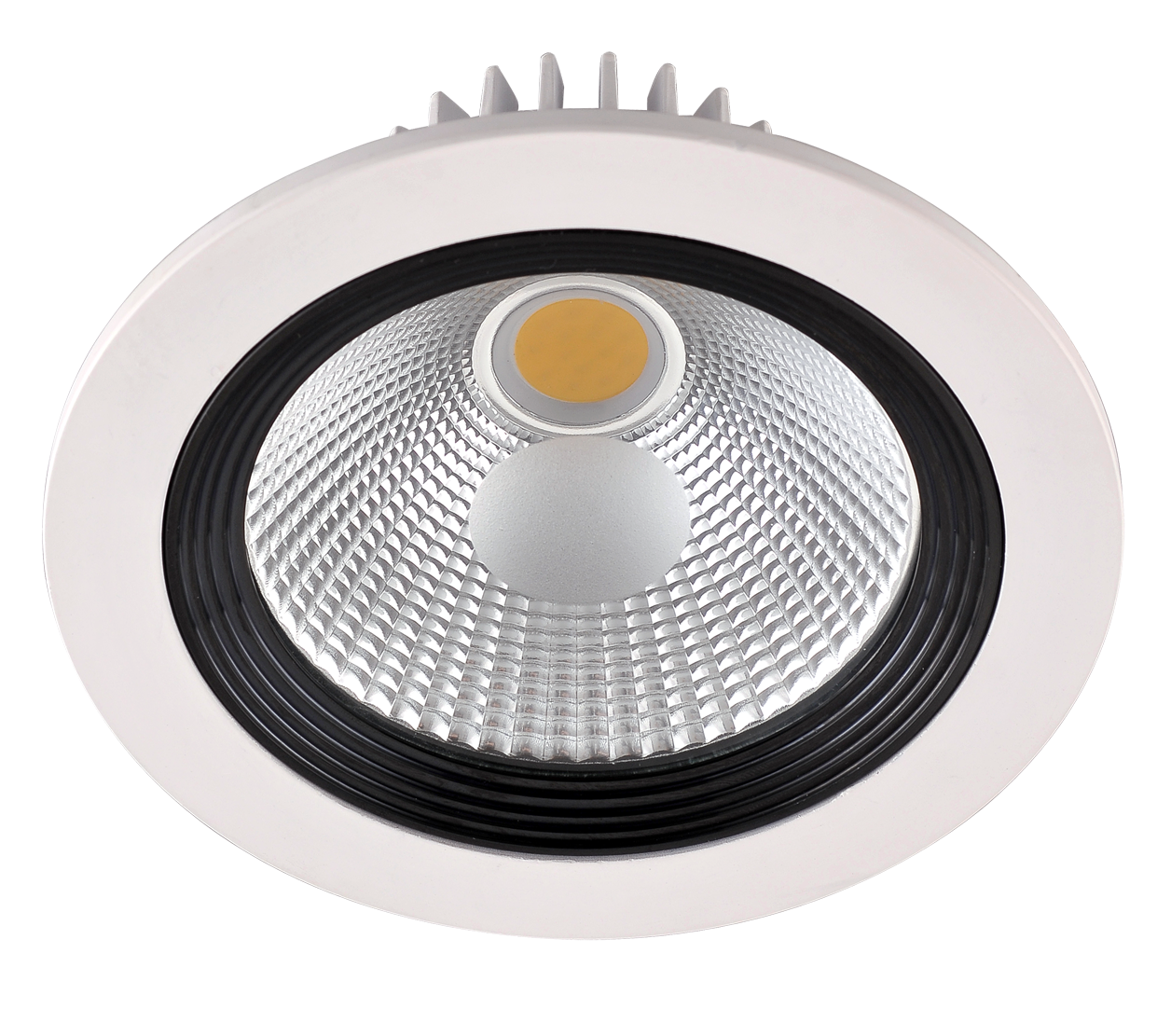 LED-Downlight 1 x 20 W