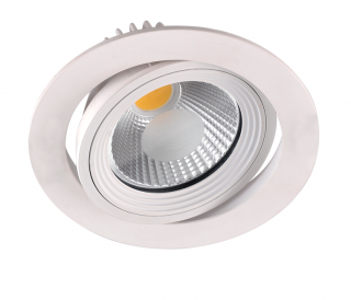 LED-Downlight 1 x 10 W