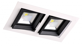 LED Downlight 2 x 10W