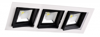 LED Downlight 3 x 10W